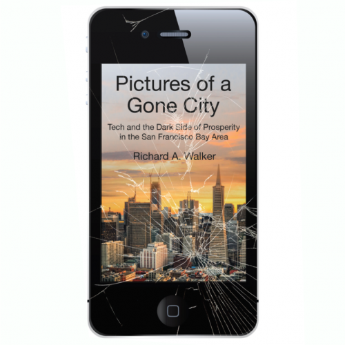 Book cover: Pictures of a Gone City